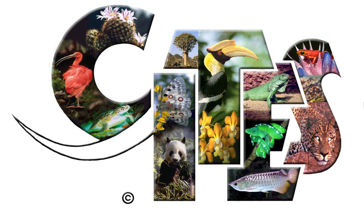 Wettelijke  verplichtingen in het  kader van CITES Reptielen en Ampfibieën